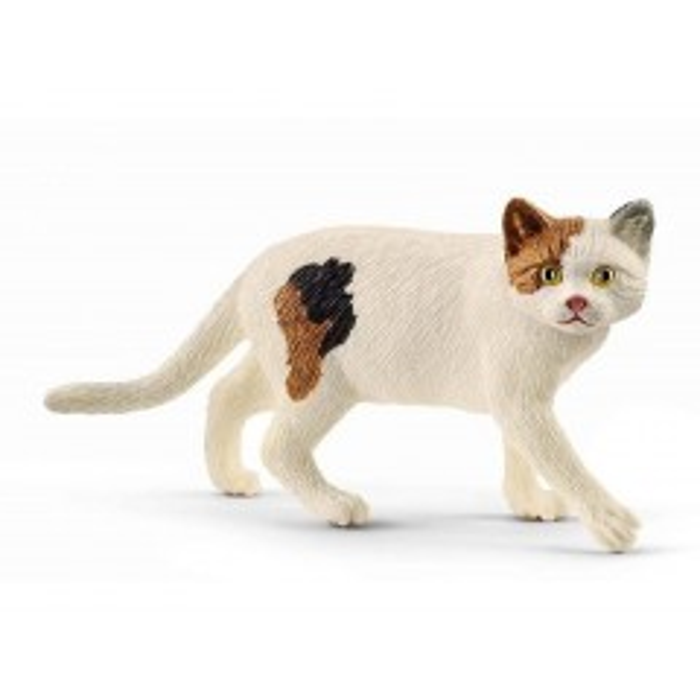 Schleich Kat, Amerikansk korthårskat